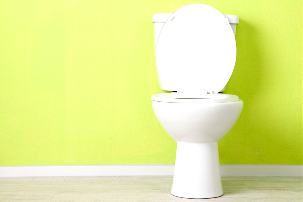 Tips for Fixing Common Household Problems Without Involving the Maintenance Staff - Overflowing Toilet