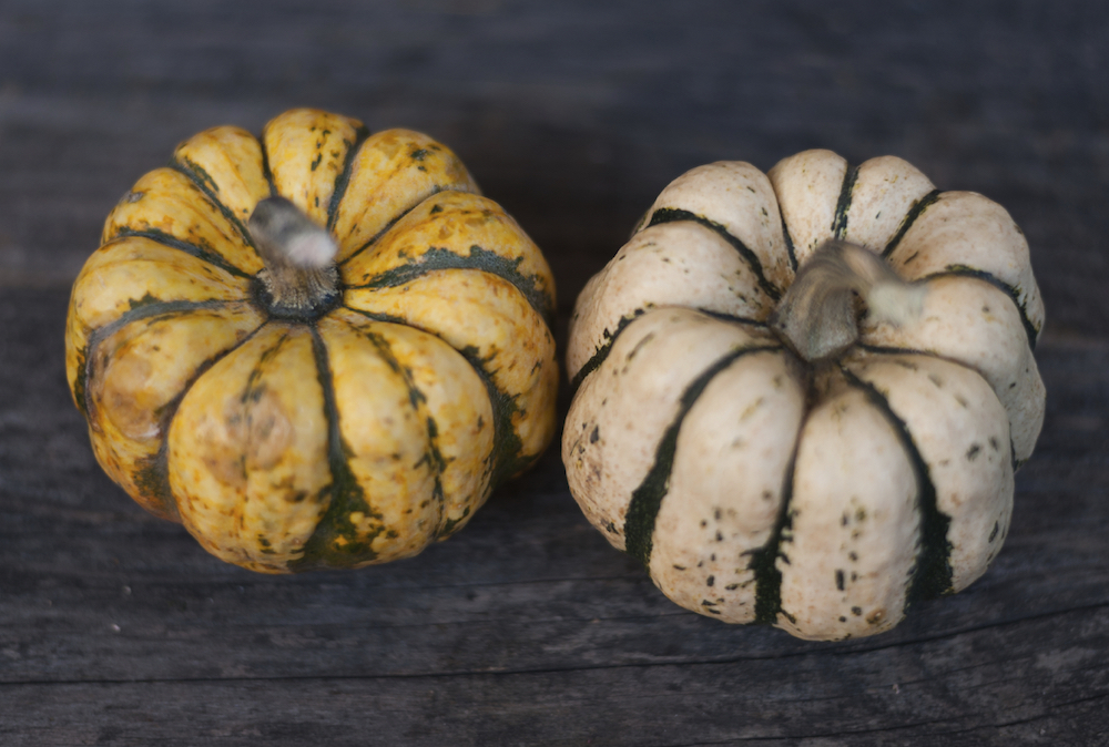 Halloween Ideas for Decorating Your Apartment - Pumpkins Galore