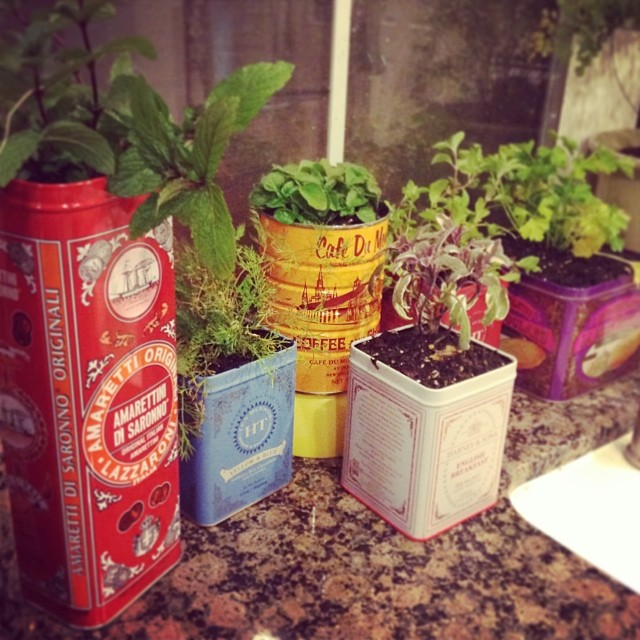 Easy DIY Projects for the Weekend Warrior - Herb Garden