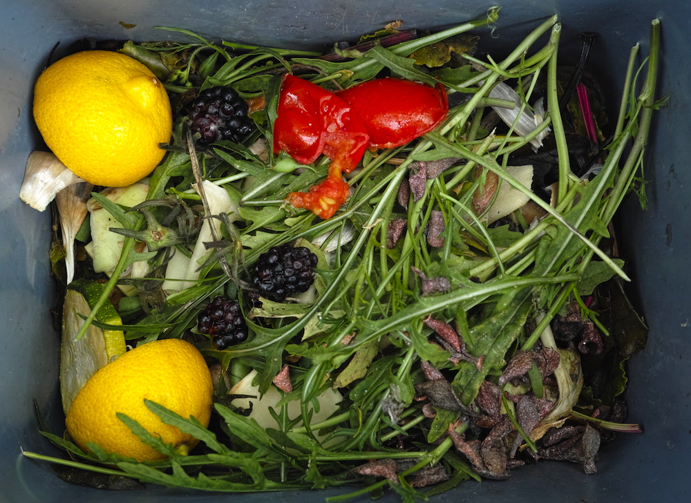 Waste Not, Want Not Cut Back on Bad Habits - Food Waste