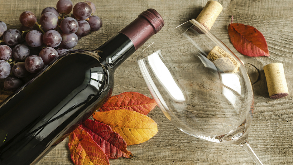 Best Wines for Fall