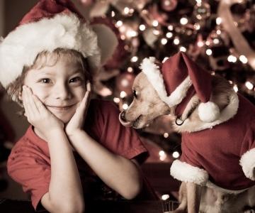 Holiday Card Ideas - Cute Kid and Dog