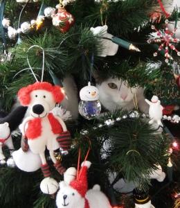 Holiday Card Ideas - Cat inside Christmas Tree