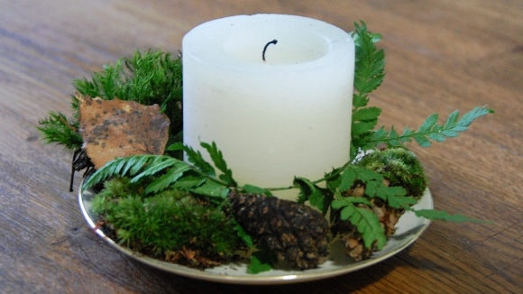 Winter Decor Ideas - Pine cones and candle