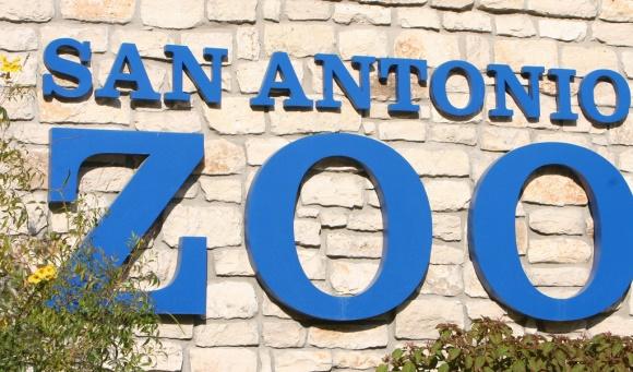 Best Spring Activities in San Antonio - San Antonio Zoo