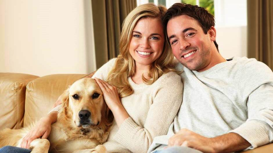 Should You Get a Pet With Your Significant Other?