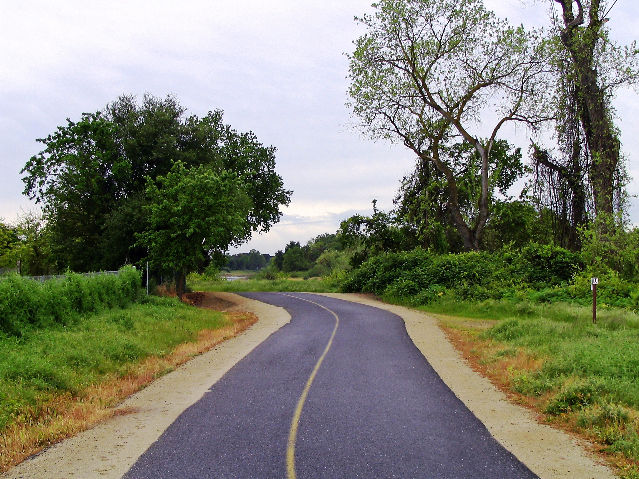 Summer Activities in Sacramento - American River Parkway