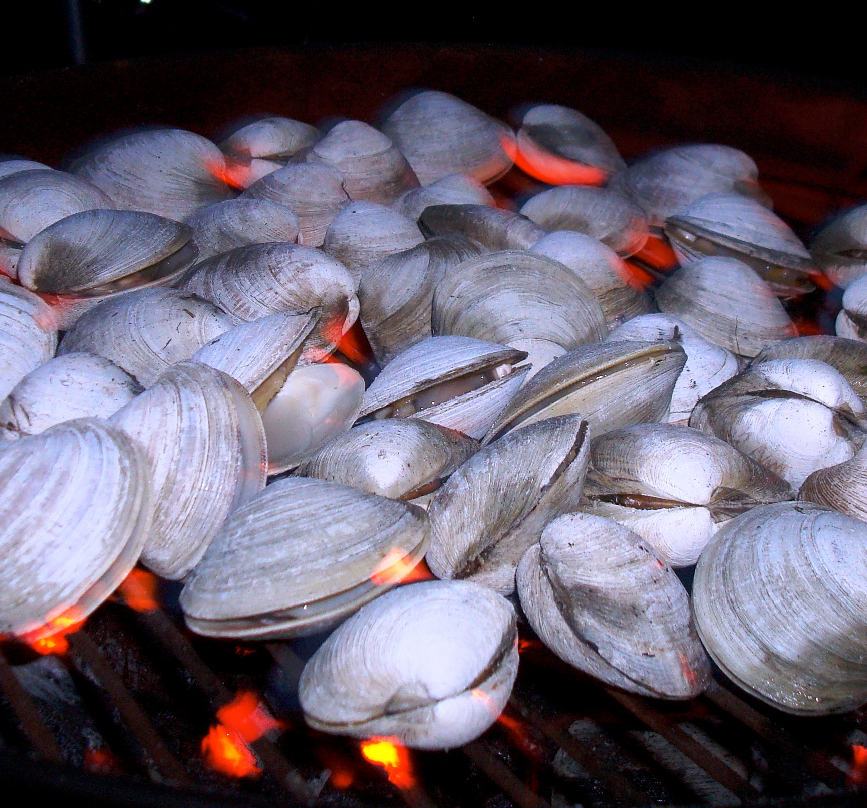 Summer Grilling - Clams