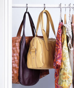 A Shopaholic's Guide to Closet Organization Bliss - Nothing Purse-onal