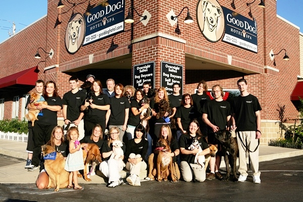 Dog-Friendly Indianapolis - Good Dog Hotel & Spa