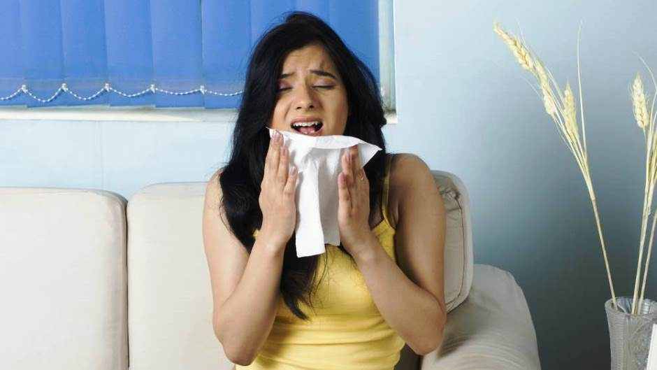 Reduce Allergens in Your Apartment