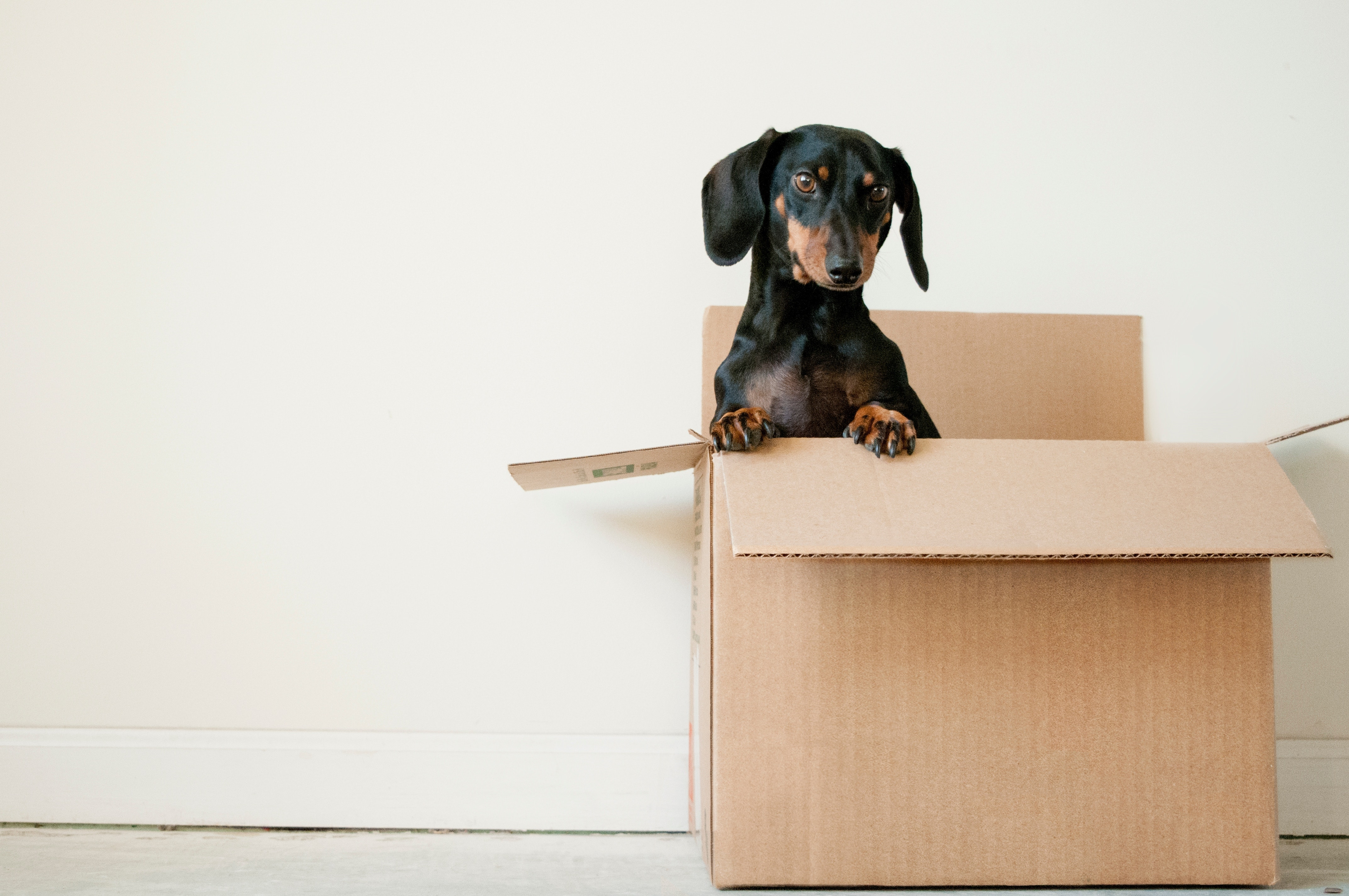 Relocating: Our Best Apartment-Hunting Tips for a Smarter Move
