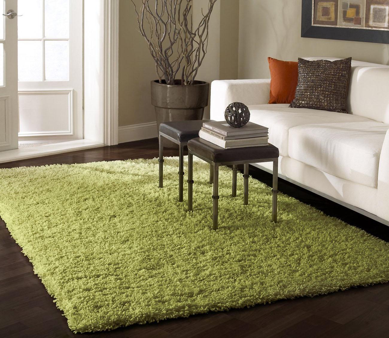 shag-area-rugs_1