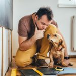 DIY projects and dog