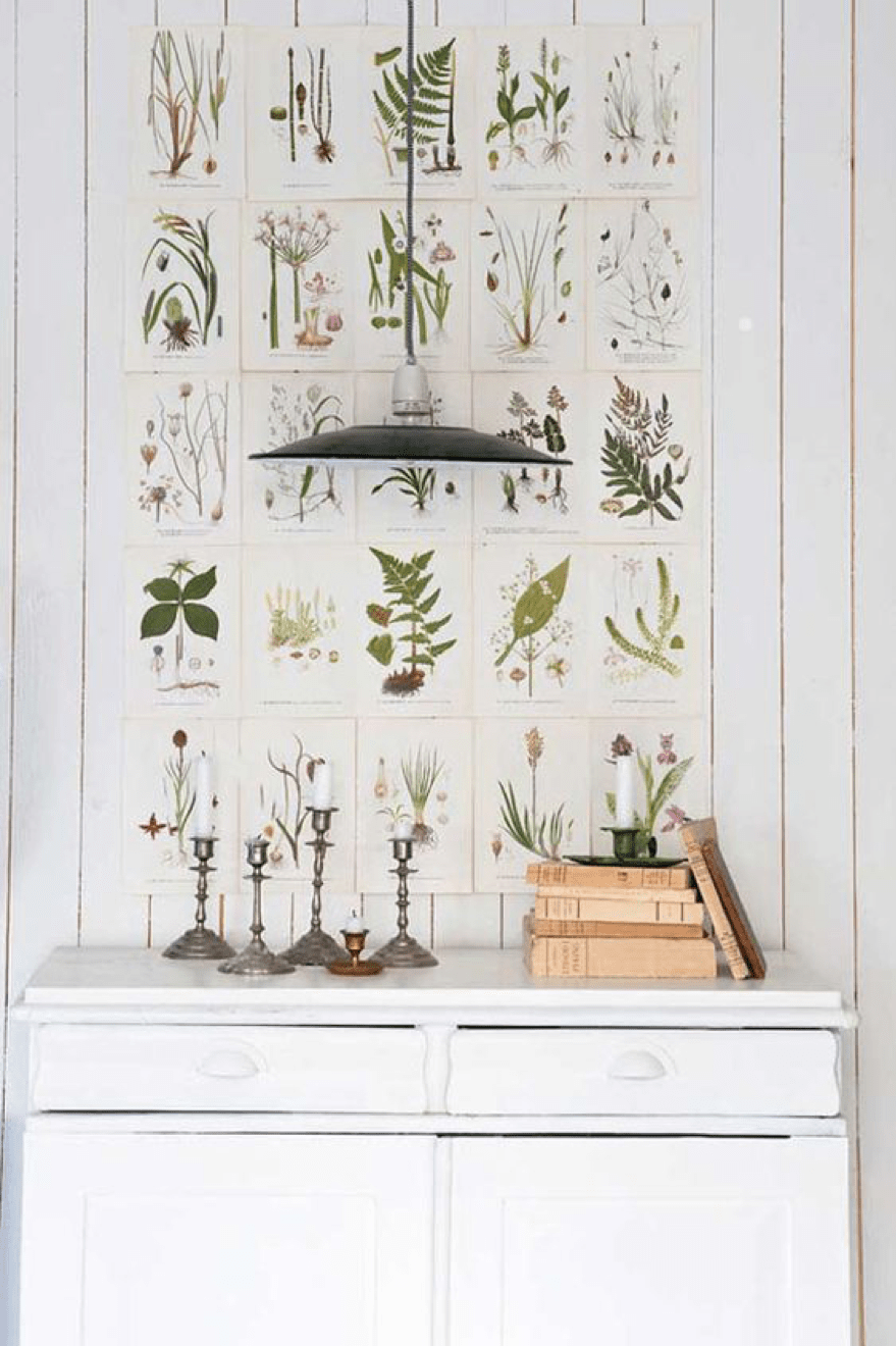 DIY decor botanic prints