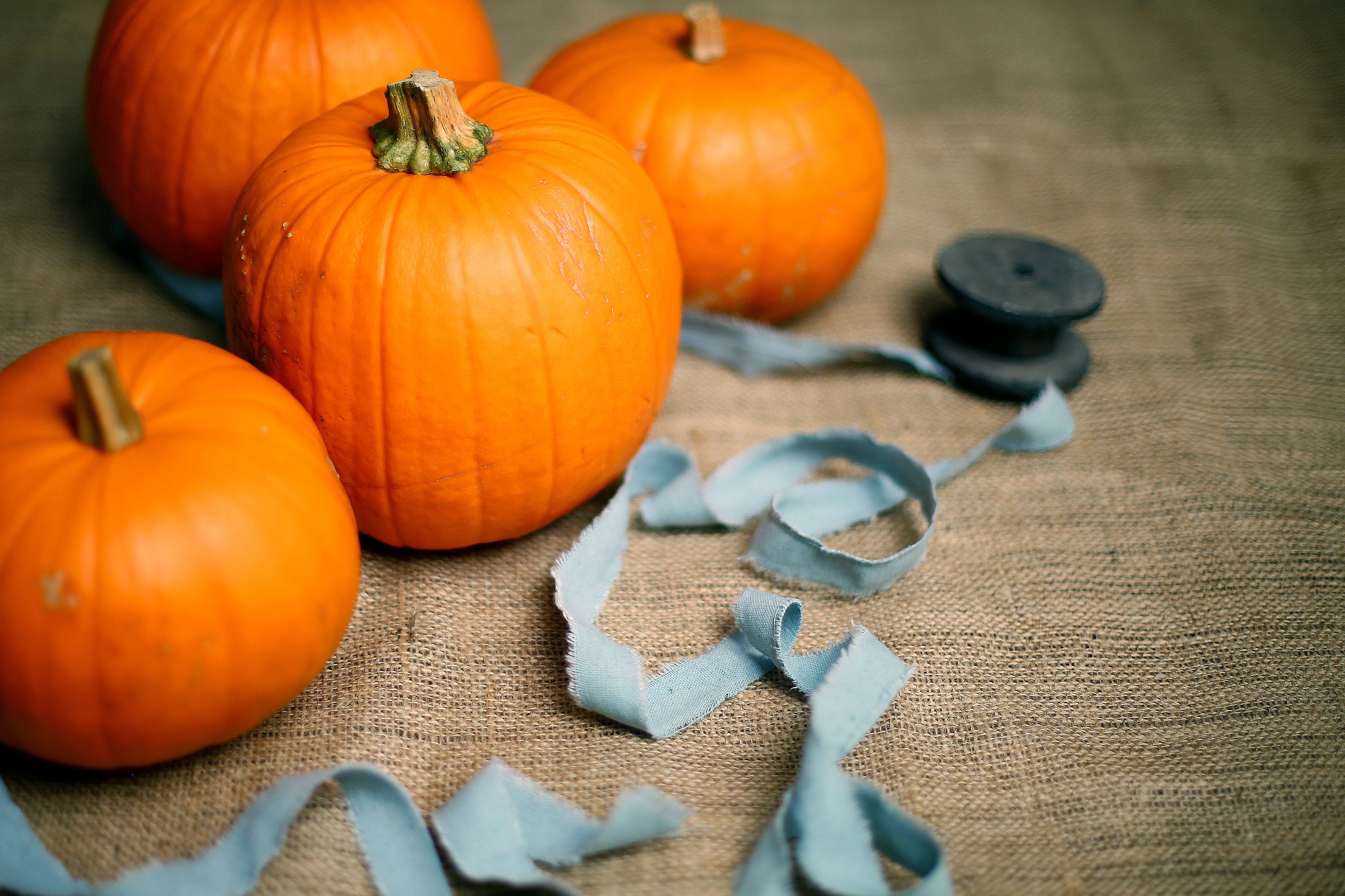 Our Favorite DIY Halloween Projects