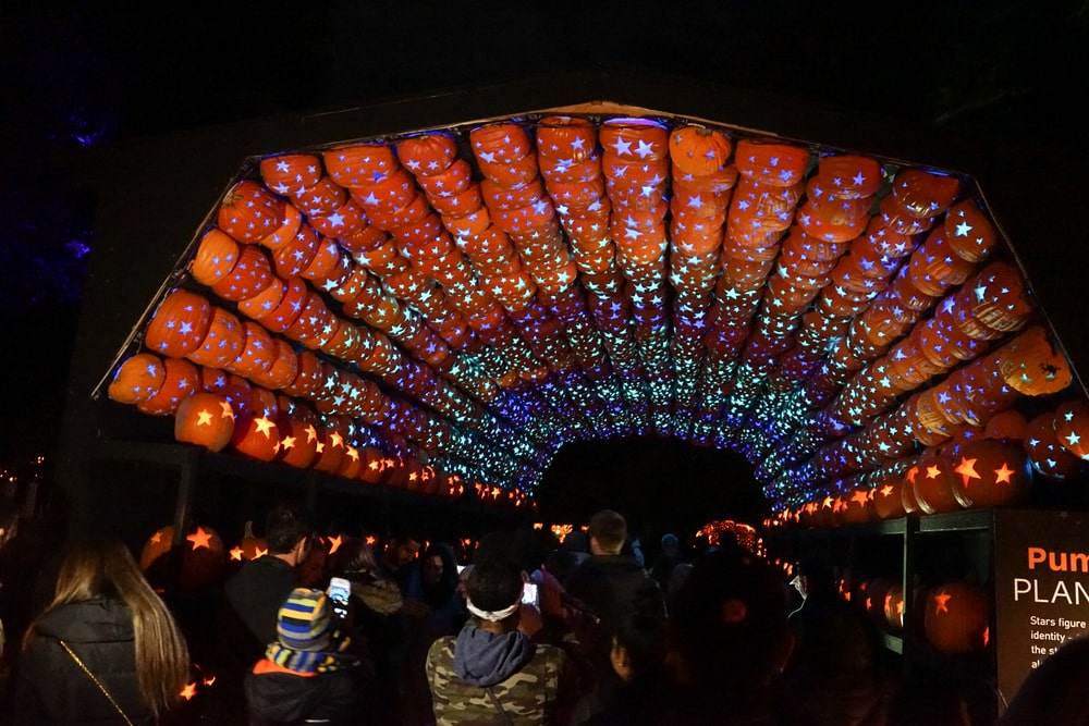 The Great Jack O Lantern Blaze