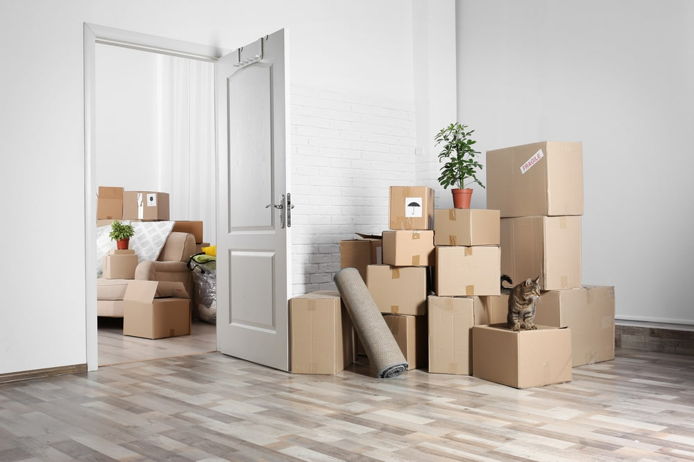 moving boxes in a house