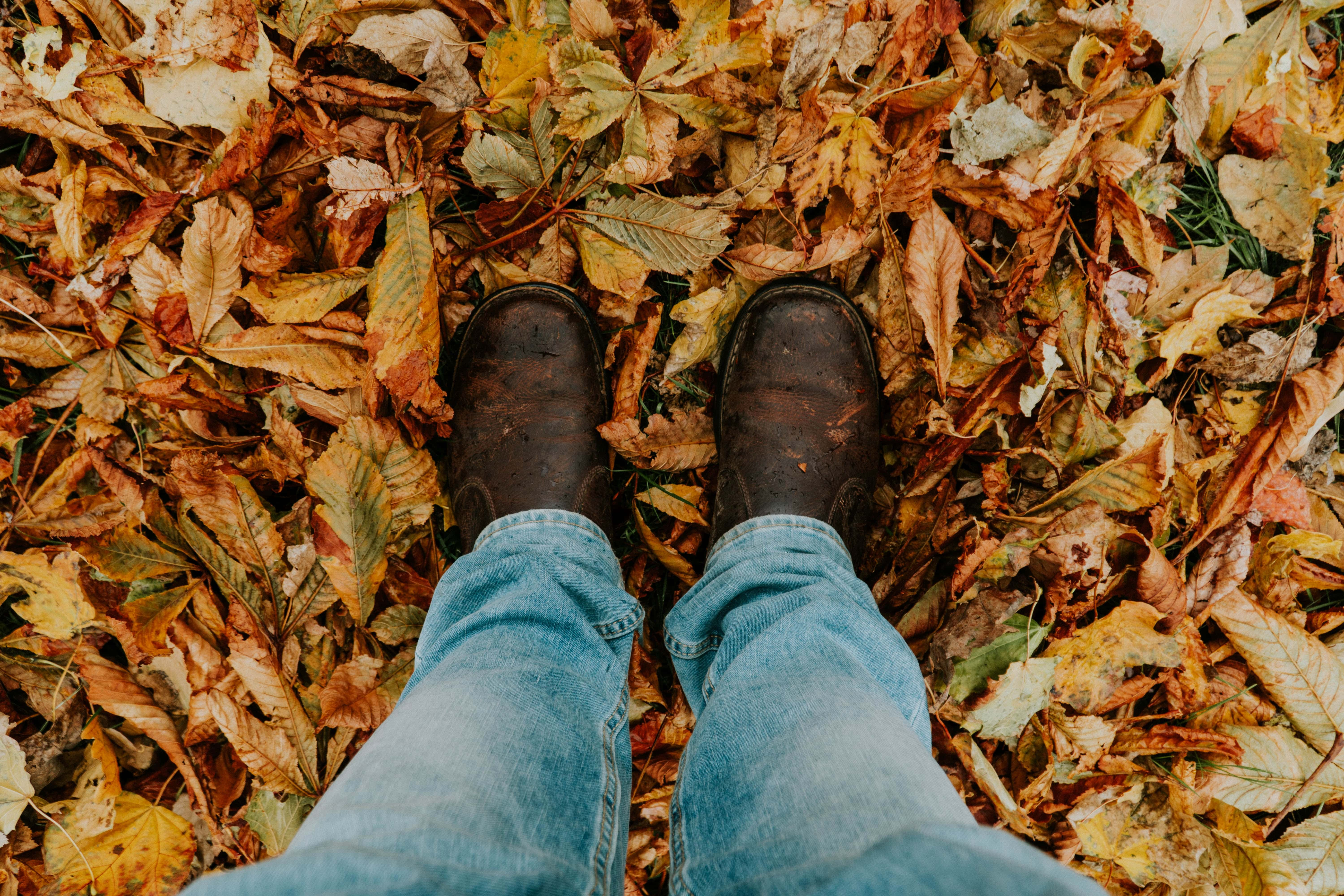 person standing in pile of leaves
