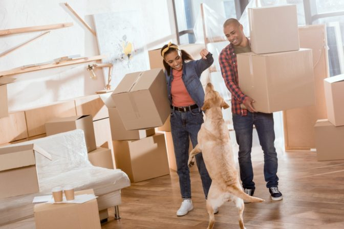 couple and dog with moving boxes
