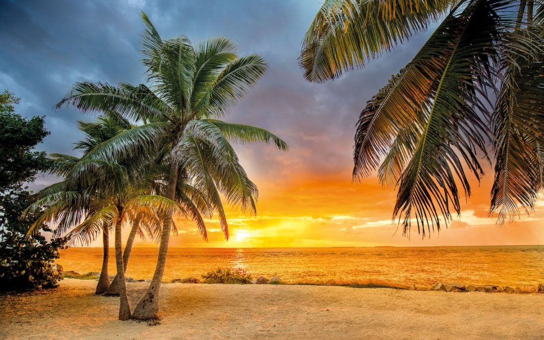Why You Should Consider an Apartment in the Florida Keys