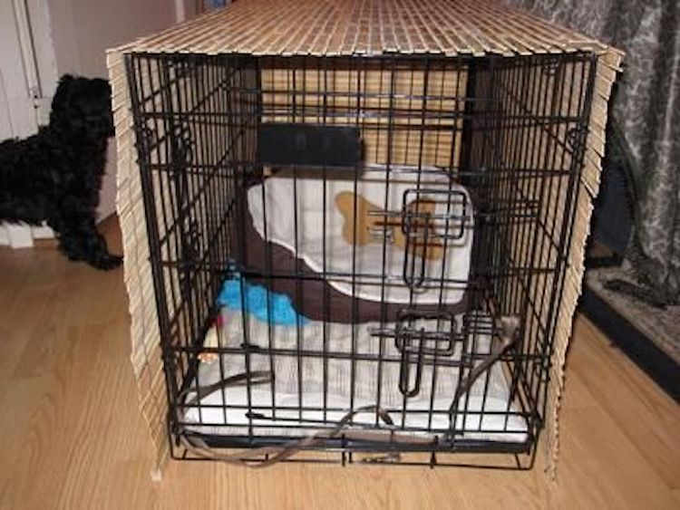 dog crate blinds