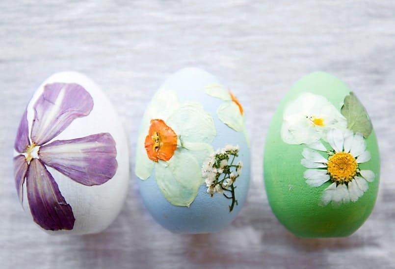 pressed flowers eggs