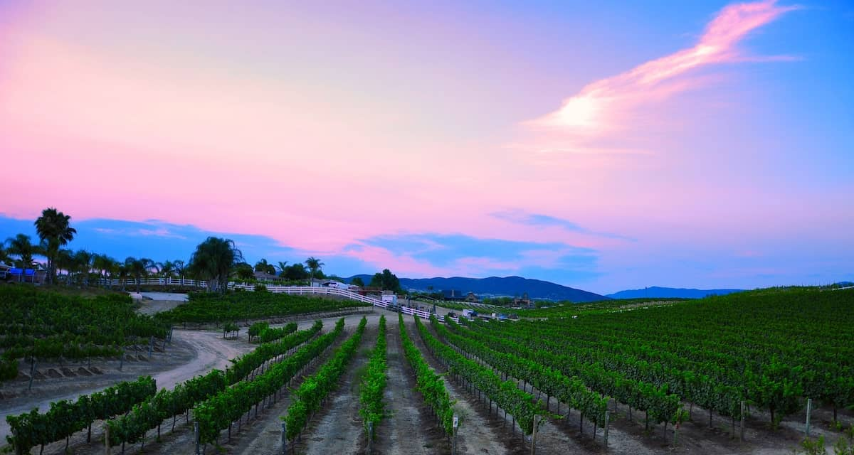 Temecula Valley Wine Country california