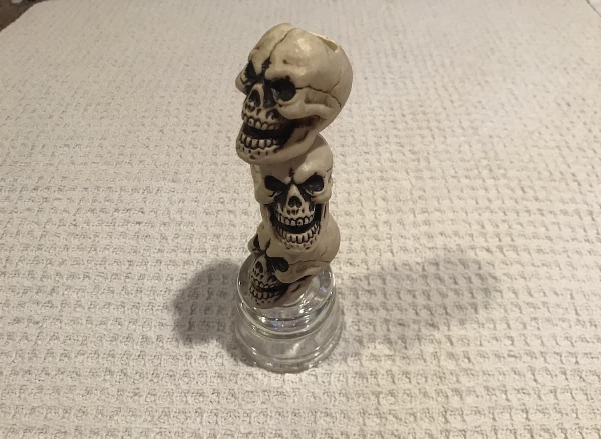Step 4: Final skull