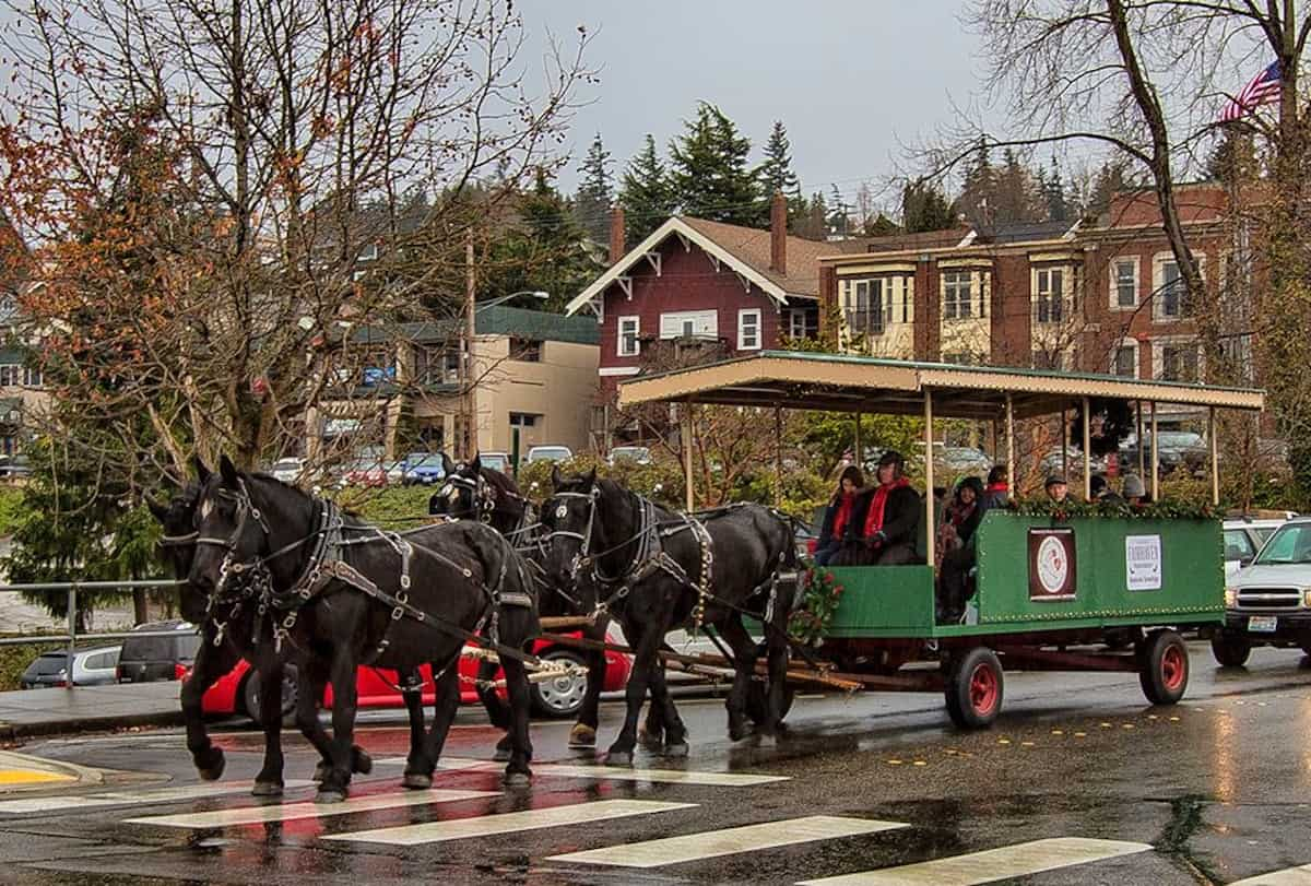 Winterfest horse drawn carriage