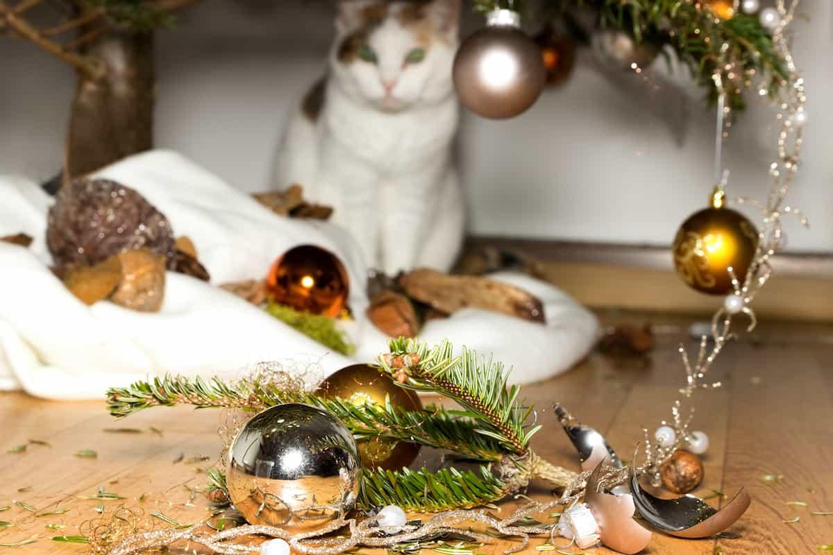 cat breaking ornaments