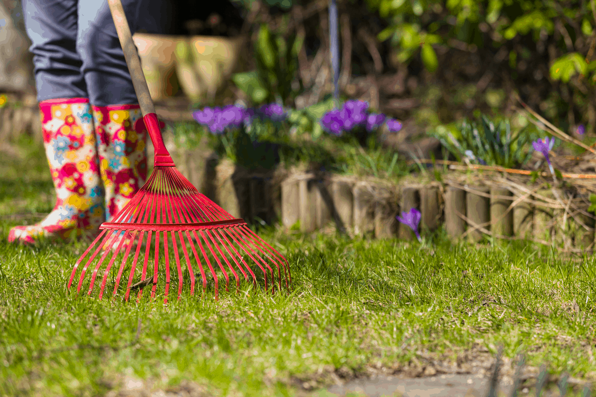 questions to ask when renting a house, who is responsible for yard work