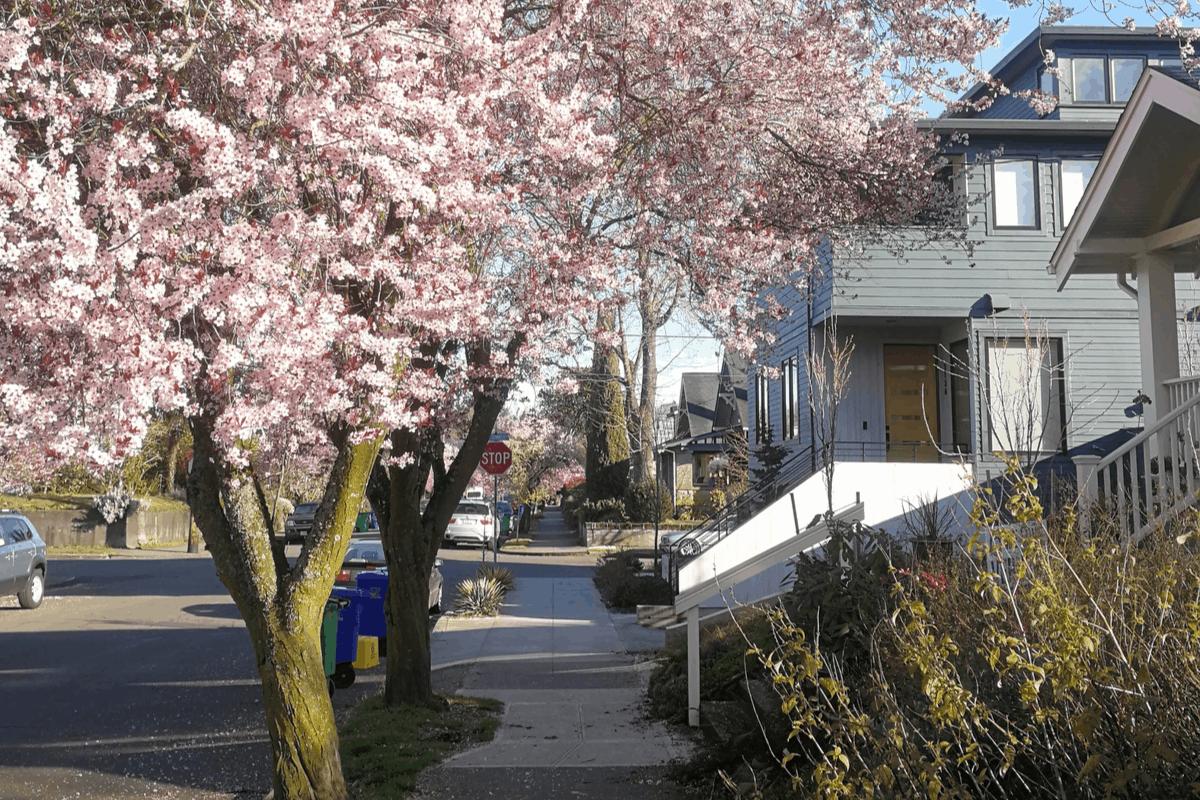 Alberta neighborhood in Northeast Portland.